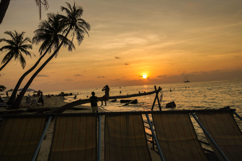 Hur åka billigt till Maldiverna?