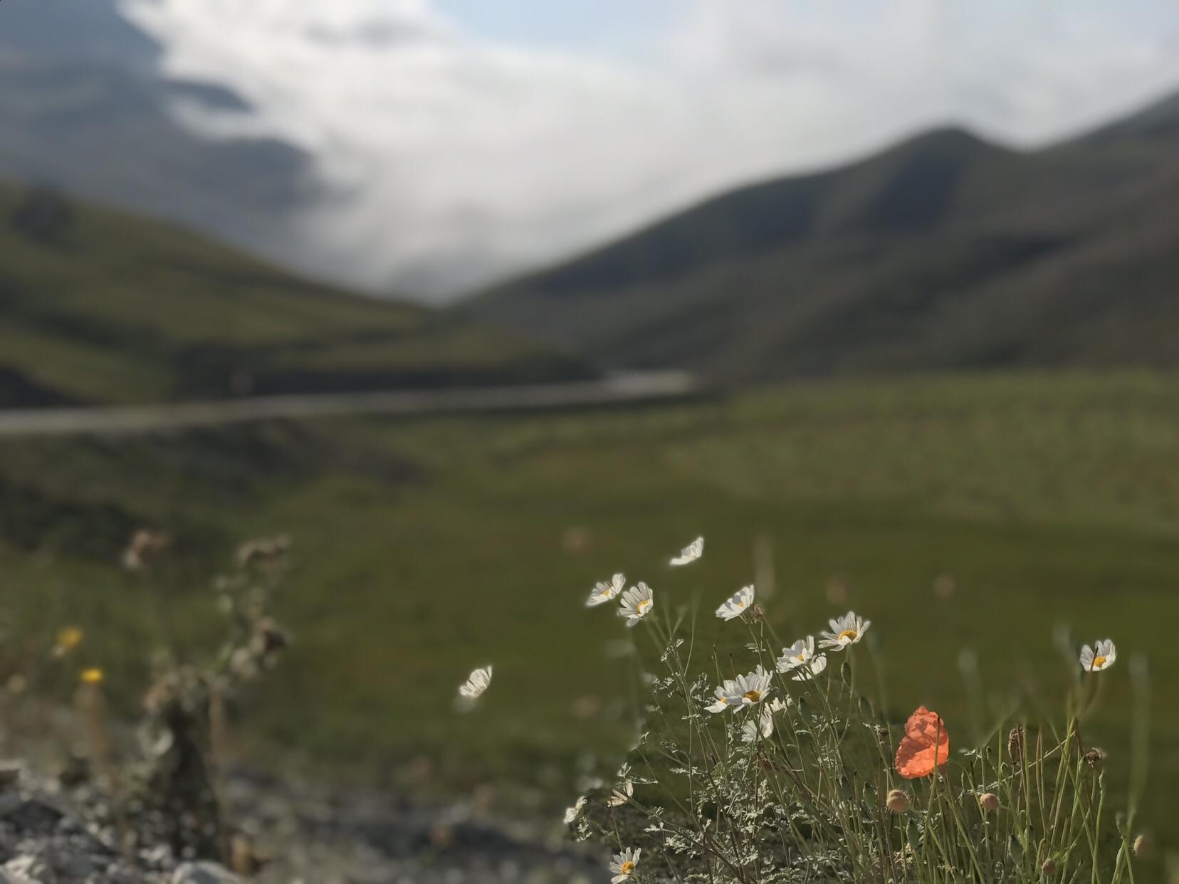 En vecka i ett annorlunda Kaukasus